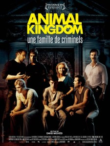 animal kingdom affiche