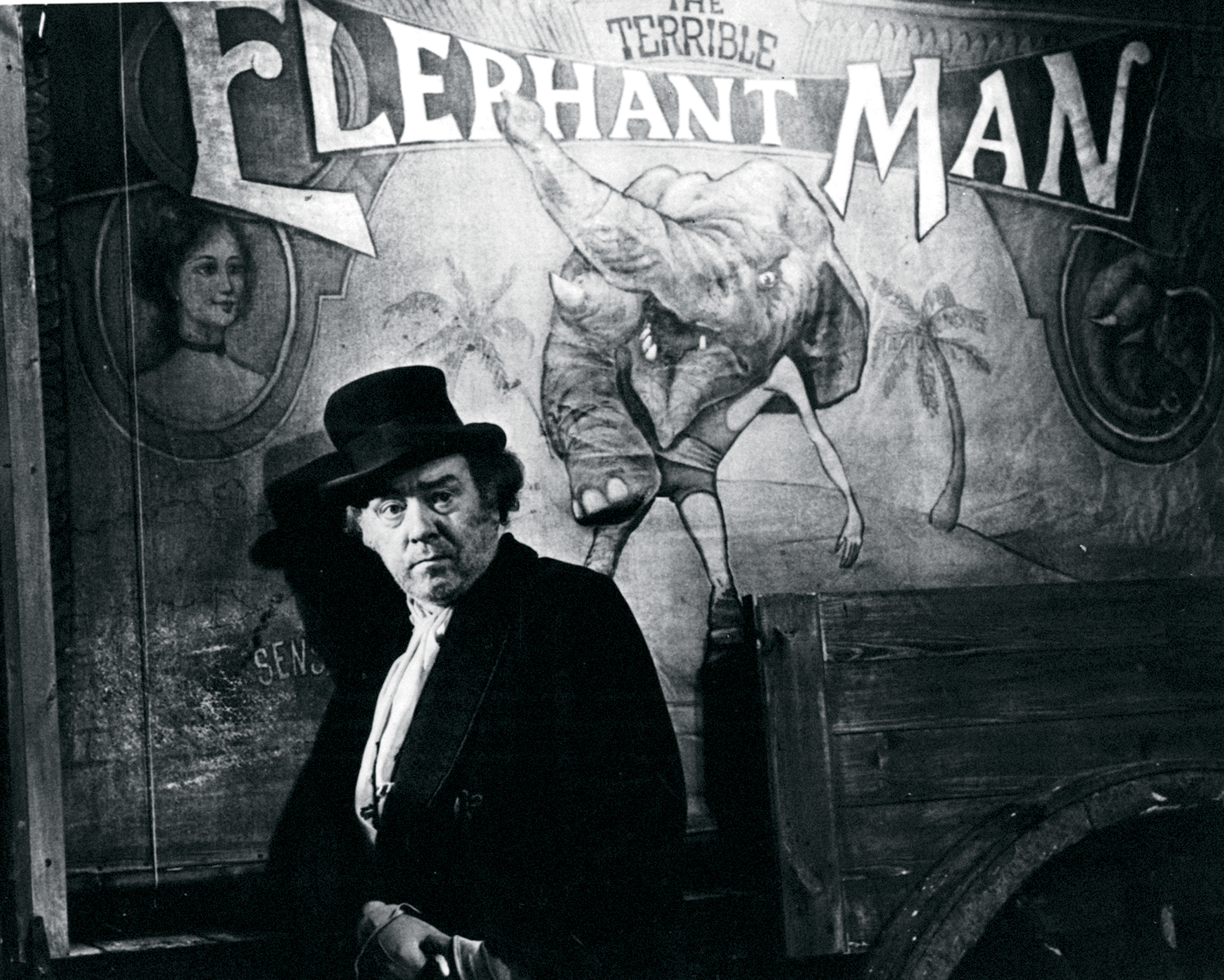 elephant man essay the elephant man movie